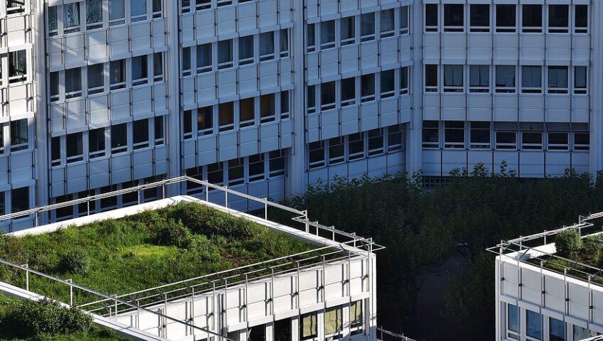 System dachu zielonego